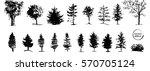 ink illustration of growing... | Shutterstock .eps vector #570705124