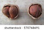 Close Up Of Two Hazelnuts...