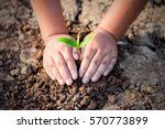 two hands of the children are...   Shutterstock . vector #570773899