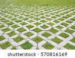 grass and cobblestone walk way... | Shutterstock . vector #570816169