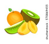 composition of juicy apricot... | Shutterstock . vector #570869455