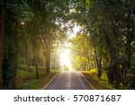 forest road trees along at the... | Shutterstock . vector #570871687