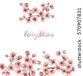 cherry blossom spring flowers... | Shutterstock . vector #570907831