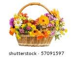 beautiful flowers in a basket ... | Shutterstock . vector #57091597