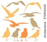 seagull silhouette isolated | Shutterstock .eps vector #570943105