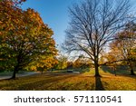 patterson park during autumn in ... | Shutterstock . vector #571110541