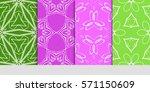 set of original floral  linear...   Shutterstock .eps vector #571150609