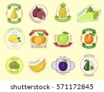 vector fruits badges. | Shutterstock .eps vector #571172845
