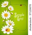 camomile frame | Shutterstock .eps vector #57120070