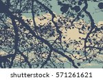 silhouette of branches on a... | Shutterstock .eps vector #571261621
