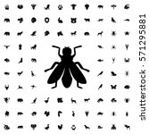 fly icon illustration isolated... | Shutterstock .eps vector #571295881