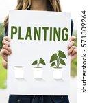planting gardening flower farm... | Shutterstock . vector #571309264