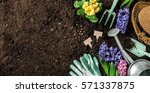 gardening tools  hyacinth... | Shutterstock . vector #571337875