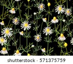 seamless floral pattern with... | Shutterstock .eps vector #571375759