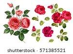 red rose set. vintage red roses ... | Shutterstock . vector #571385521