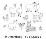 cute lama  alpaca and cactuses... | Shutterstock .eps vector #571423891