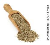 tribulus terrestris herbal... | Shutterstock . vector #571457485