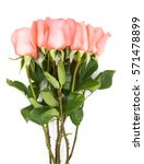 Pink Roses Bouquet In White...