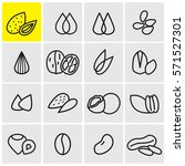 seeds and nuts linear icons | Shutterstock .eps vector #571527301
