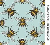 Insect Beetle Seamless Pattern...