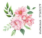 hand painted watercolor... | Shutterstock . vector #571652179