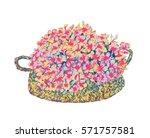 doodle art garden terrariums... | Shutterstock .eps vector #571757581