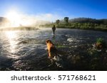 fly fishing at dawn on the... | Shutterstock . vector #571768621