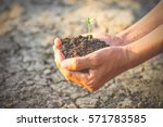 men hand are planting the... | Shutterstock . vector #571783585
