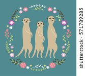 cute meercats | Shutterstock .eps vector #571789285