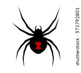 black widow spider with red... | Shutterstock .eps vector #571792801