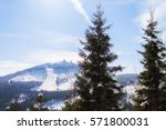 view of the great arber in... | Shutterstock . vector #571800031