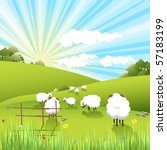 sheeps | Shutterstock .eps vector #57183199