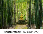 buddha statue in middle of... | Shutterstock . vector #571834897