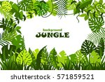 decorative tropical jungle... | Shutterstock .eps vector #571859521