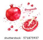 watercolor illustration of... | Shutterstock . vector #571875937