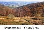 autumn background in woods.... | Shutterstock . vector #571896751