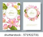 vector botanical vertical... | Shutterstock .eps vector #571922731