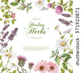 vector healing flowers and... | Shutterstock .eps vector #571923871