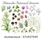 big set of watercolor botanical ...   Shutterstock . vector #571927549
