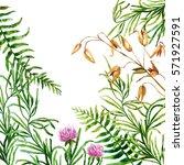 big set of watercolor botanical ... | Shutterstock . vector #571927591