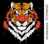 abstract splash tiger background | Shutterstock .eps vector #571948165