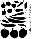 various peppers silhouette | Shutterstock .eps vector #571951675