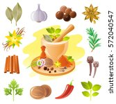 spice herb icons. healthy food...   Shutterstock .eps vector #572040547