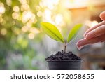 close up of woman's hand... | Shutterstock . vector #572058655