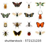 colorful butterfly and bug... | Shutterstock .eps vector #572121235