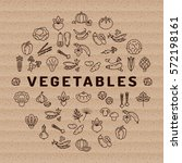 vegetable icon circle... | Shutterstock .eps vector #572198161