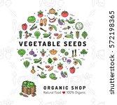 vegetable seeds banner organic... | Shutterstock .eps vector #572198365