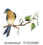 Watercolor Bird Sitting On Tre...