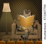 Stock photo the clever cat is reading fairy tales for kittens kittens listen to him carefully 572307754