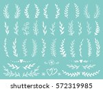 hand drawn set of rustic... | Shutterstock . vector #572319985